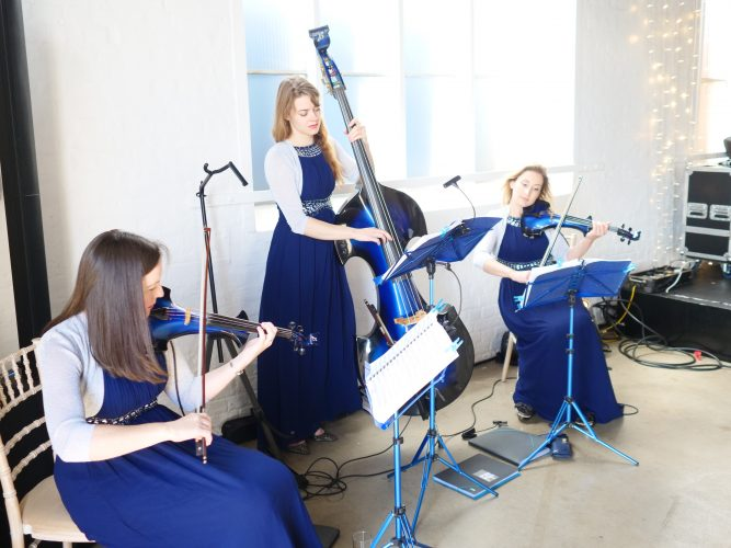 Electric String Quartet or Trio for Weddings